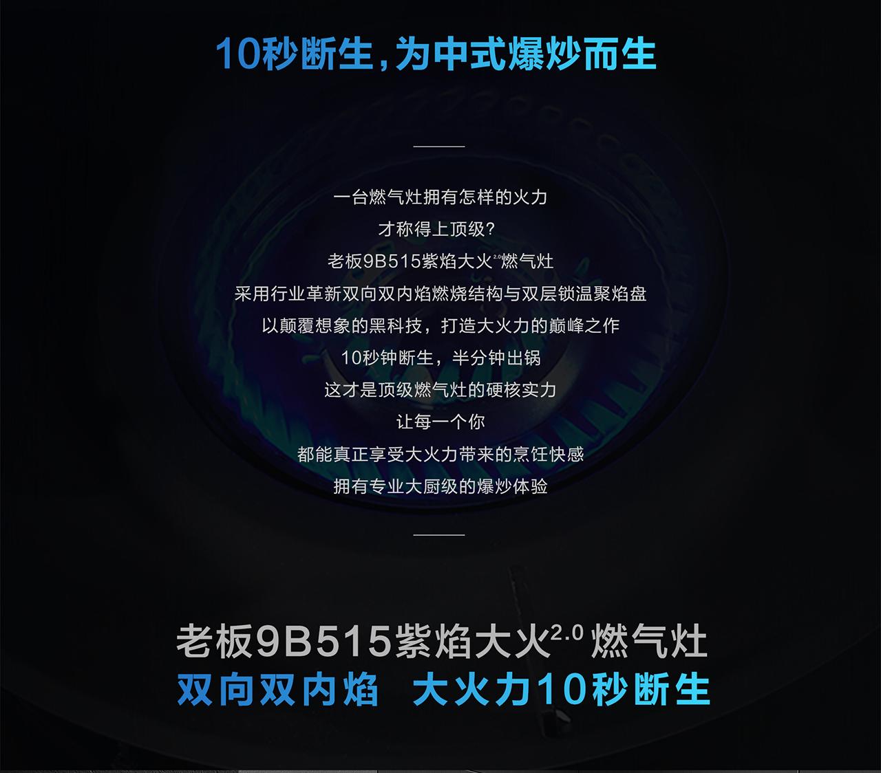 9B515商品详情页-PC端1950-0519-2_02.jpg